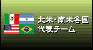 北米、南米各国代表レプリカ